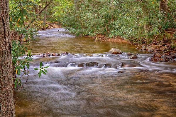 Photograph - Caledonia Stream by Dan Urban
