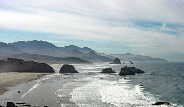 Wall Art - Photograph - Cannon Beach by William Moore