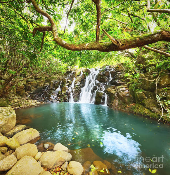 Wall Art - Photograph - Cascade Vacoas Waterfall. Mauritius by MotHaiBaPhoto Prints