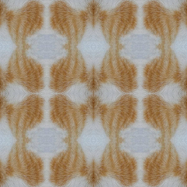 Wall Art - Mixed Media - Cat Fur Abstract Design by Jan Fidler