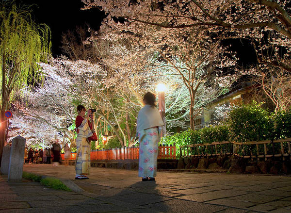 People Watching Photograph - Cherry Blossom Viewing by Grant Faint