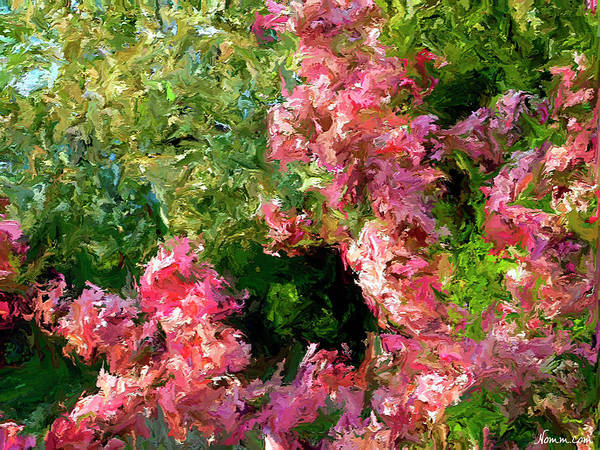 Digital Art - Cherry Blossoms by Rein Nomm