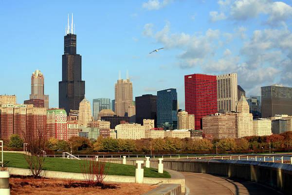 Willis Tower Photograph - Chicago Skyline by Hisham Ibrahim