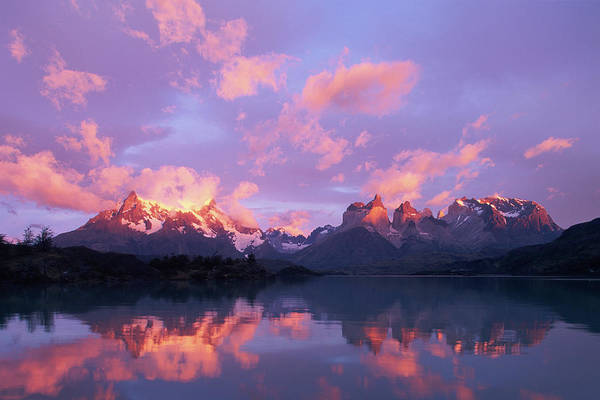 Beauty In Nature Photograph - Chile, Patagonia, Torres Del Paine Np by Paul Souders