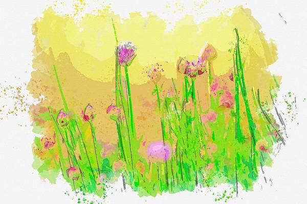 Wall Art - Painting - Chives -  Watercolor By Ahmet Asar by Ahmet Asar