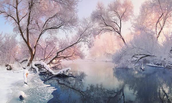 Photograph - Christmas Lace by Vlad Sokolovsky