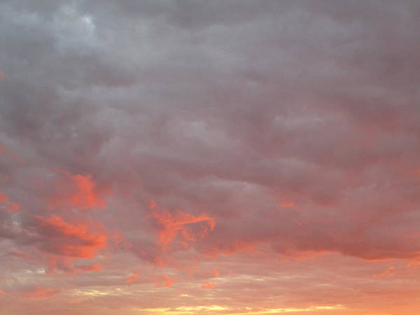 Photograph - Cloudy by Rosita Larsson