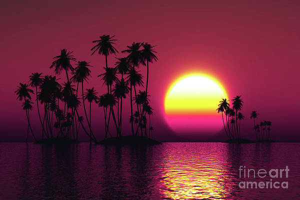 Wall Art - Photograph - Coconut Islands At Sunset by Aleksey Tugolukov