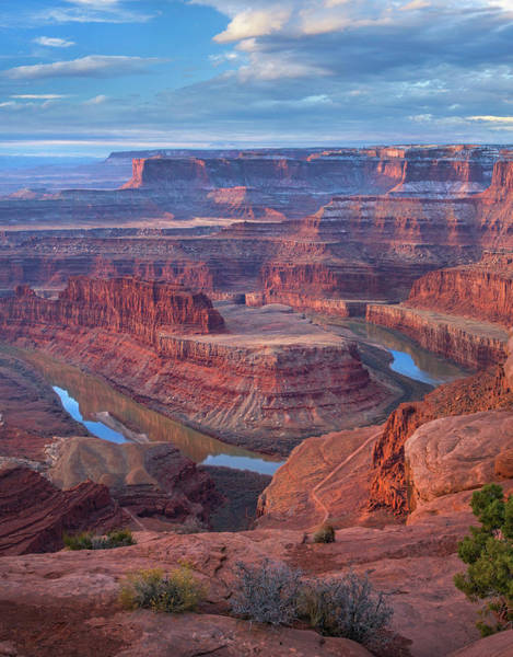 Photograph - Colorado River From Deadhorse Point by
