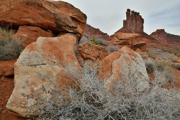 Photograph - Colorful Boulders In Valley Of The Gods by Ray Mathis