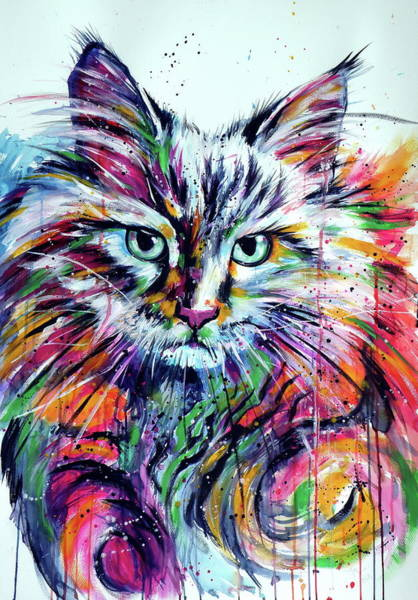 Wall Art - Painting - Colorful Cat by Kovacs Anna Brigitta