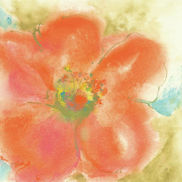 Wall Art - Painting - Coral Poppy II by Chris Paschke