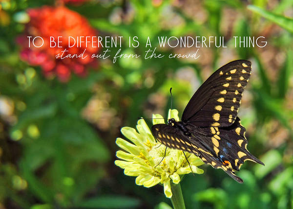 Photograph - Corolla Garden Quote by Jamart Photography