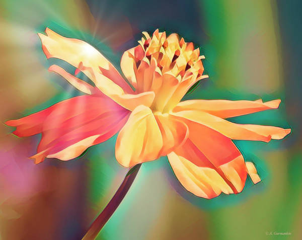 Photograph - Cosmos Flower, Digital Art by A Gurmankin