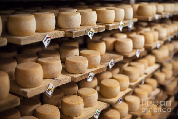 Freshness Wall Art - Photograph - Cow Milk Cheese, Stored In A Wooden by Maxim Golubchikov