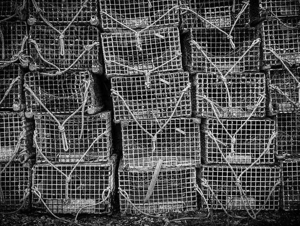 Photograph - Crab Traps by Steve Stanger