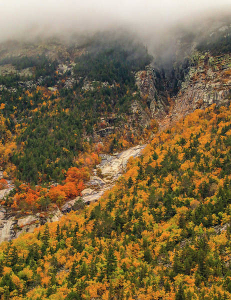 Photograph - Crawford Notch Fall Foliage by Dan Sproul