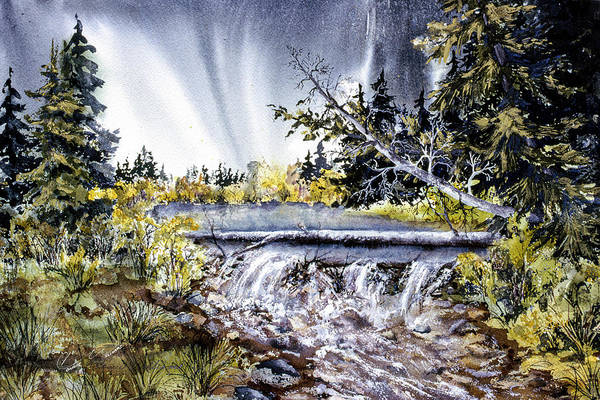 Painting - Crystal Creek by Connie Williams