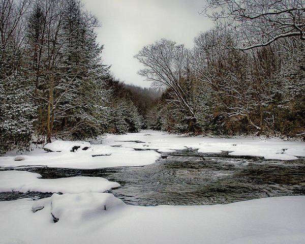 Photograph - Cucumber Run In Winter by Dan Urban