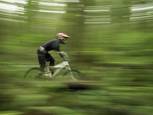Cyclist Mountain Biking Through Forest Art Print