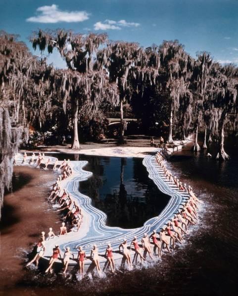 Cypress Gardens Photograph - Cypress Gardens by Michael Ochs Archives