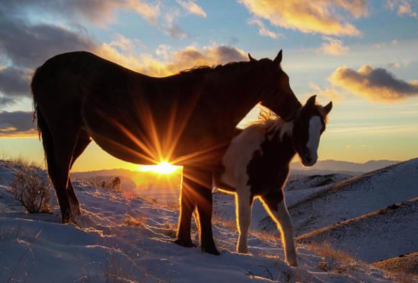Photograph - Days End by Kent Keller