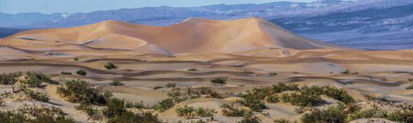 Photograph - Death Valley National Park Sand Dunes At Sunset by Alex Grichenko