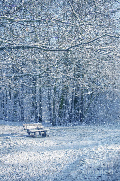 Flake Photograph - Snowy Landscape With A Bench by Delphimages Photo Creations