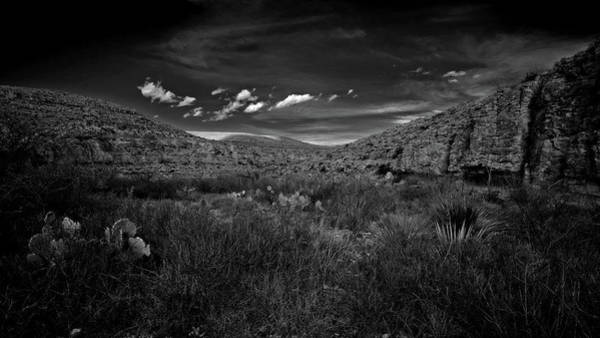 Photograph - Desert And Sky by George Taylor