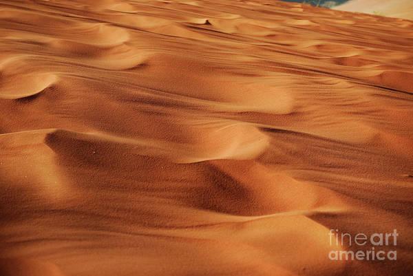 Photograph - Desert Sand by Jelena Jovanovic