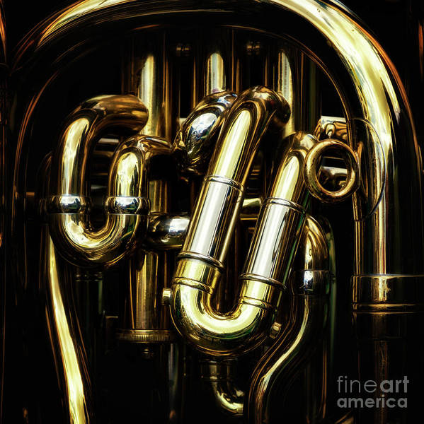 Wall Art - Photograph - Detail Of The Brass Pipes Of A Tuba by Jane Rix