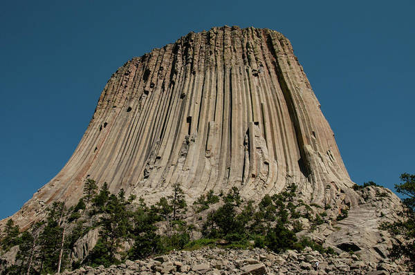 Wall Art - Photograph - Devils Tower by Dennis Morris