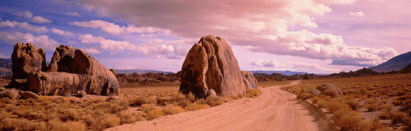 Wall Art - Photograph - Dirt Road Passing Through A Desert by Panoramic Images