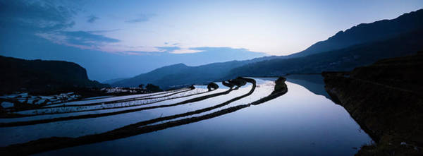 Wall Art - Photograph - Duoyishu Rice Terraces At Dawn by Panoramic Images