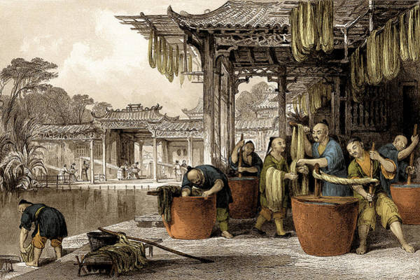 Photograph - Dyeing And Winding, Silk Making In China by Science Source