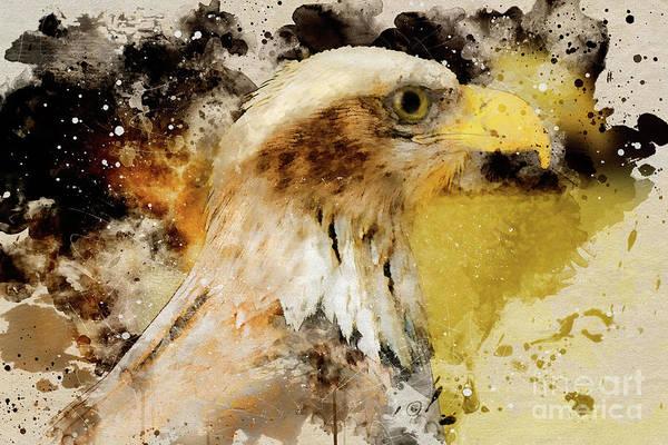 Digital Art - Eagle by Mark Jackson