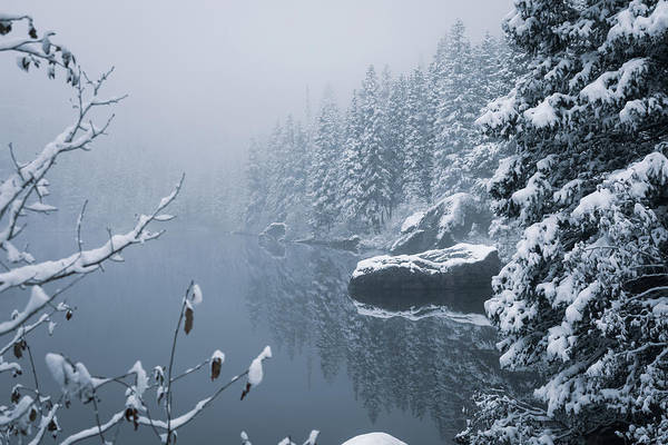Wall Art - Photograph - Early Snow by Eric Glaser