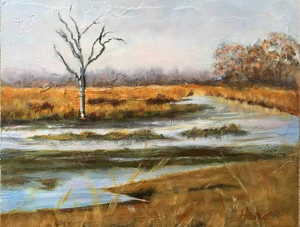Early Spring On The Marsh Art Print