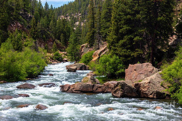 Photograph - Eleven Mile Canyon by Steve Krull