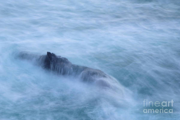 Wall Art - Photograph - Engulfed by Jeff Swan
