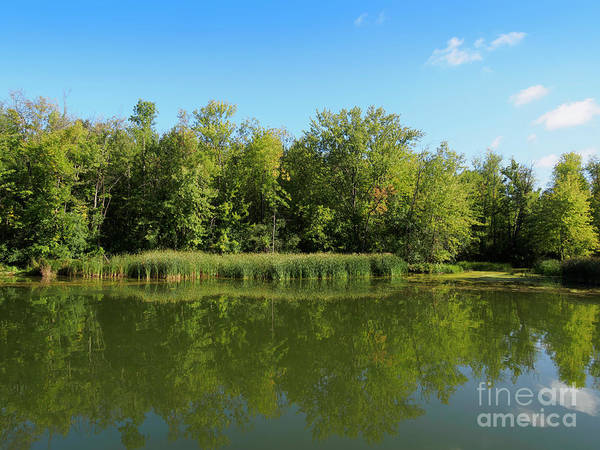 Wall Art - Photograph - Erie Canal In Early Autumn by Louise Heusinkveld