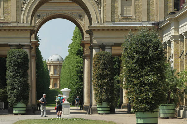 Topics Photograph - Exotic Trees Rolled Out At Sanssouci by Sean Gallup