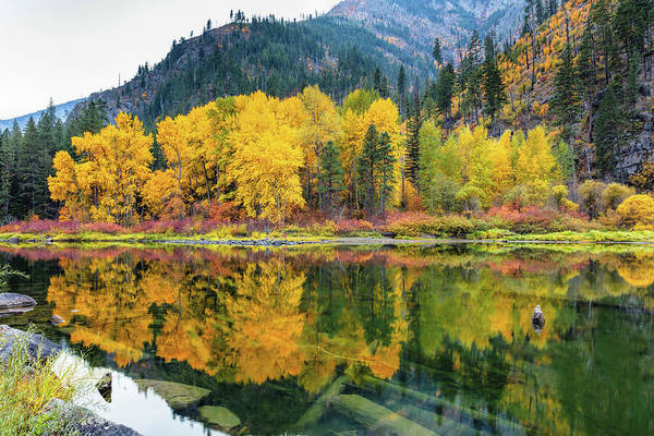 Wall Art - Photograph - Fall Colors by Mike Centioli
