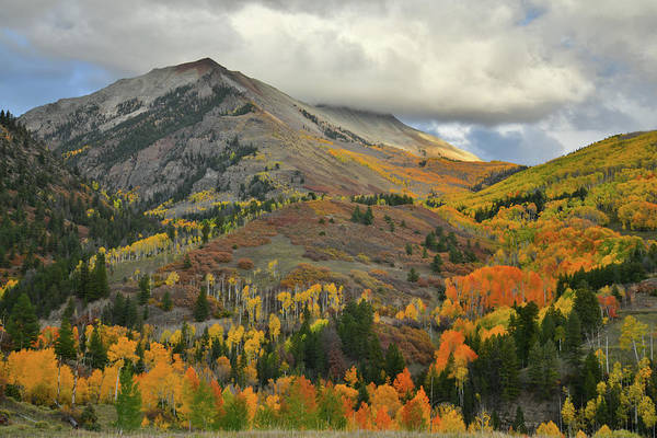 Photograph - Fall Colors On Hillsides Of Last Dollar Road by Ray Mathis