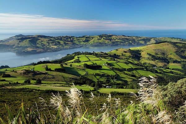 Wall Art - Photograph - Farmland At Upper Junction, And Otago by David Wall