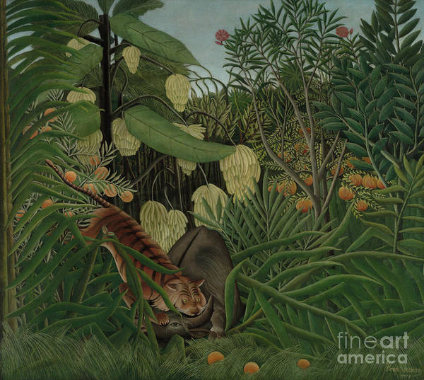 Wall Art - Painting - Fight Between A Tiger And A Buffalo, 1908 by Henri Rousseau