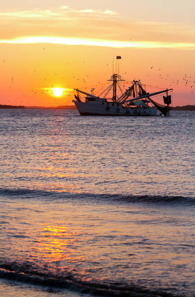 Sport Fishing Photograph - Fishing Boat At Sunset by Tshortell