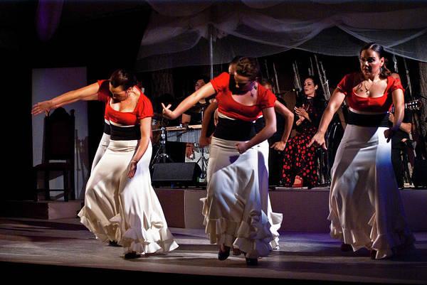 Photograph - Flamenco 39 by Catherine Sobredo