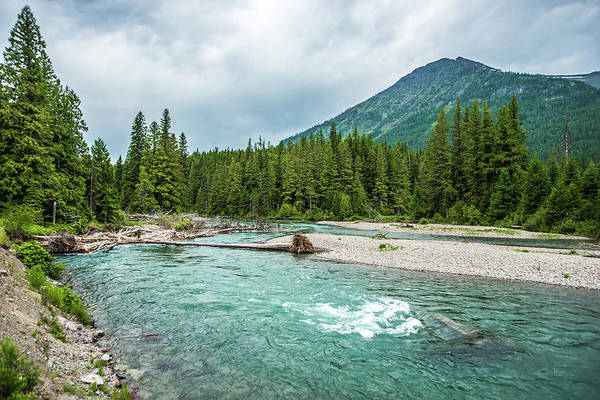 Photograph - Flathead River Rapids In Glacier National Park Montana by Alex Grichenko