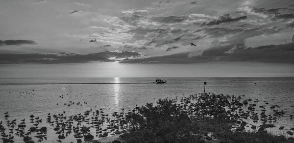 Airboat Photograph - Florida Sunset  by Pixabay